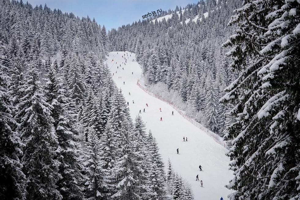 туры в сербию зимой