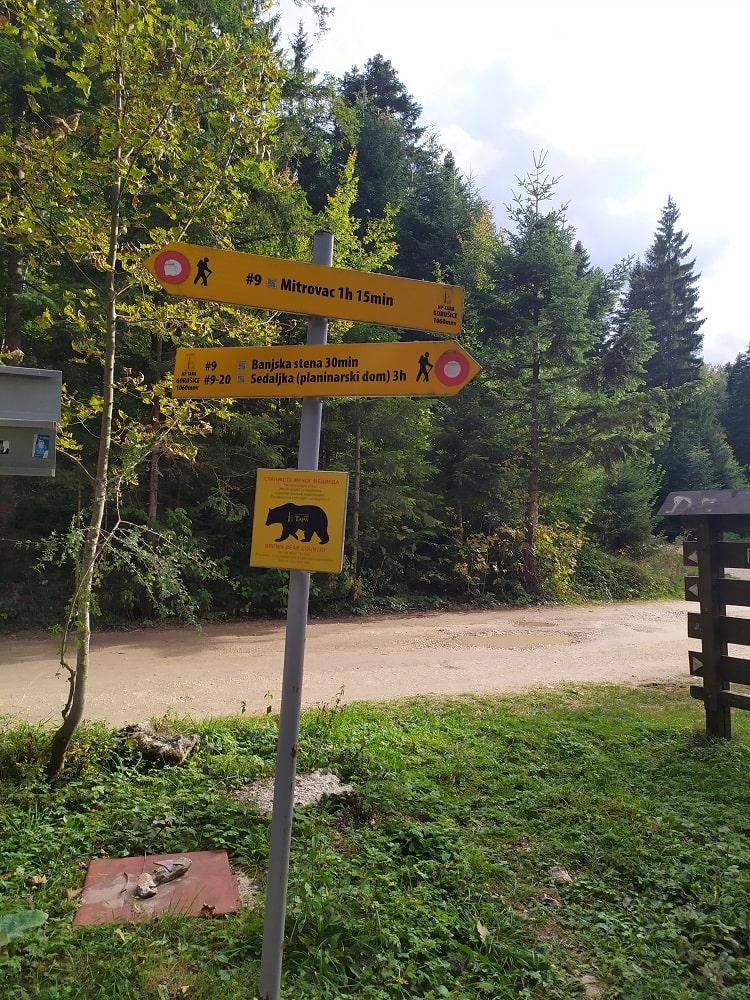 Дорога на Баньску стену медведи