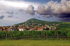 Виноградники Гудурица Сербия